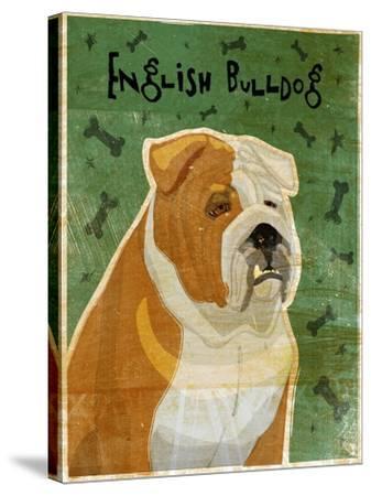 English Bulldog Tan and White-John W Golden-Stretched Canvas Print