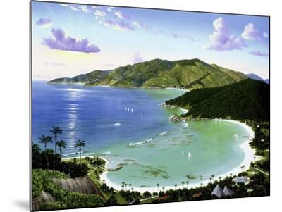 Little Dix Bay - Virgin Islands-Eduardo Camoes-Mounted Giclee Print
