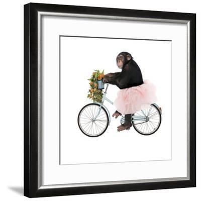 Monkeys Riding Bikes #1-J Hovenstine Studios-Framed Giclee Print