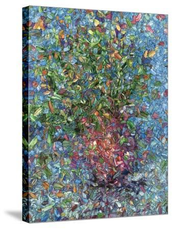 Falling Flowers-James W Johnson-Stretched Canvas Print