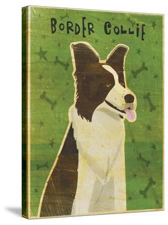 Border Collie-John W Golden-Stretched Canvas Print