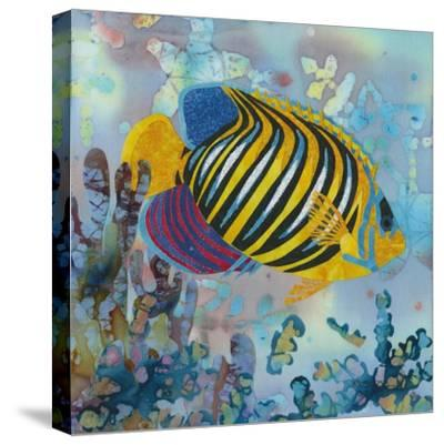 Regal Angel Fish-Kestrel Michaud-Stretched Canvas Print