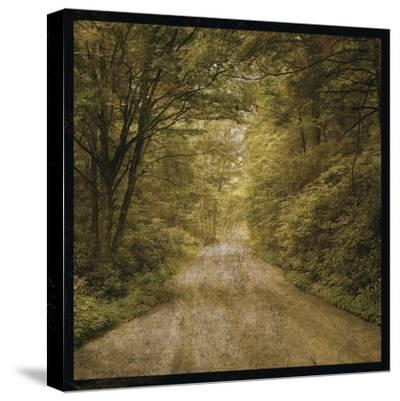 Flannery Fork Road No. 1-John W Golden-Stretched Canvas Print