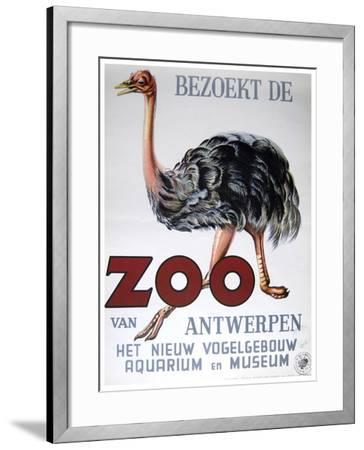 Antwerp Zoo-Vintage Apple Collection-Framed Giclee Print
