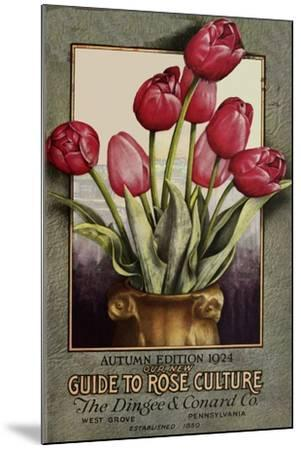 Red Roses-Vintage Apple Collection-Mounted Giclee Print