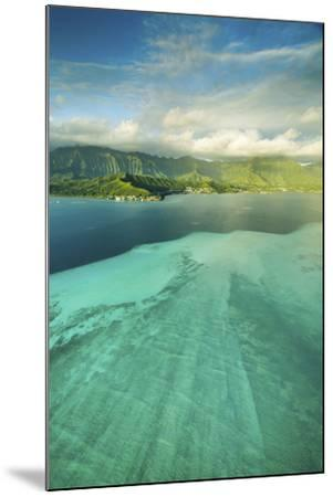 Sandbar Morning Vertical-Cameron Brooks-Mounted Photographic Print
