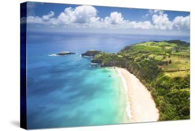 Kauai Lighthouse Beach-Cameron Brooks-Stretched Canvas Print