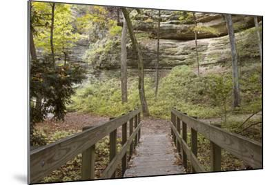 Bridge In The Canyon-Monte Nagler-Mounted Photographic Print