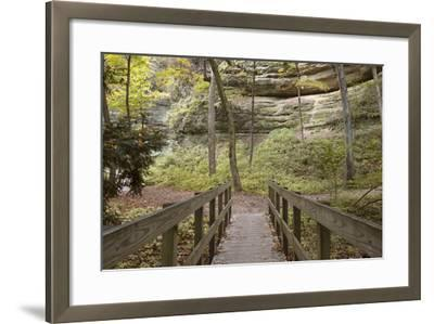 Bridge In The Canyon-Monte Nagler-Framed Photographic Print