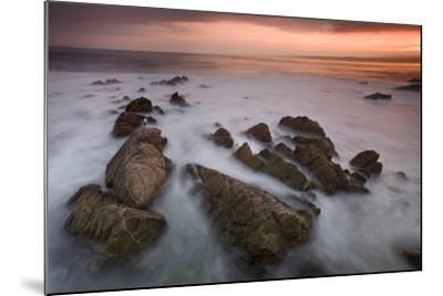Monterey (97)-Moises Levy-Mounted Photographic Print