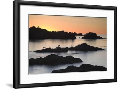 Monterey_3-67-Moises Levy-Framed Photographic Print