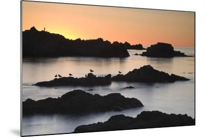 Monterey_3-67-Moises Levy-Mounted Photographic Print