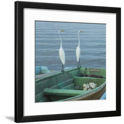 Garzas-4-2-Moises Levy-Framed Photographic Print