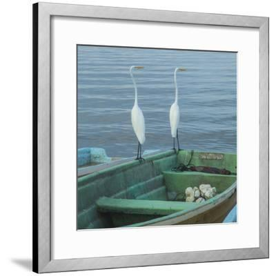 Garzas-4-2-Moises Levy-Framed Photographic Print