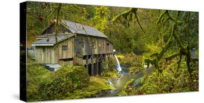 Cedar Creek Grist Mill-Moises Levy-Stretched Canvas Print