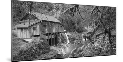 Cedar Creek Grist Mill B&W-Moises Levy-Mounted Photographic Print