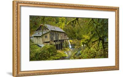 Cedar Creek Grist Mill-Moises Levy-Framed Photographic Print