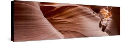 Antelope Panorama 1-Moises Levy-Stretched Canvas Print