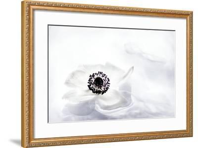 La Fleur Tranquille I-Jeanne Michel-Framed Premium Photographic Print