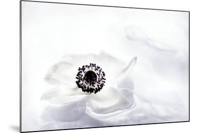 La Fleur Tranquille I-Jeanne Michel-Mounted Premium Photographic Print