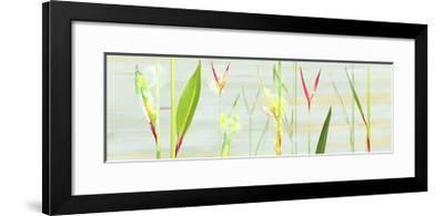 Stems in Tropics I- Shams-Saba-Framed Premium Giclee Print