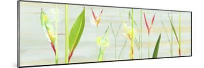 Stems in Tropics I- Shams-Saba-Mounted Premium Giclee Print