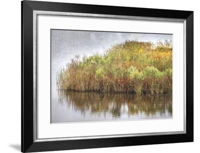Marsh 2-Lillis Werder-Framed Premium Photographic Print