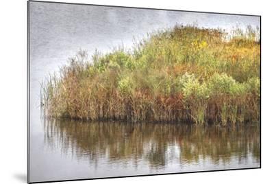 Marsh 2-Lillis Werder-Mounted Premium Photographic Print