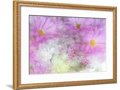Flower Impressions II-Kathy Mahan-Framed Photo