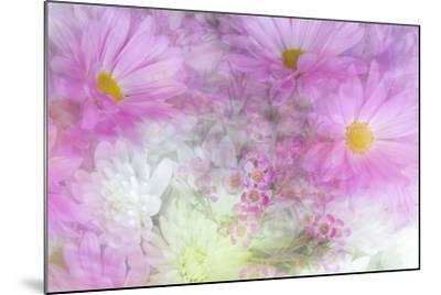 Flower Impressions II-Kathy Mahan-Mounted Photo