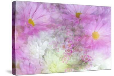 Flower Impressions II-Kathy Mahan-Stretched Canvas Print