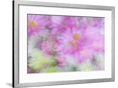 Flower Impressions I-Kathy Mahan-Framed Photo