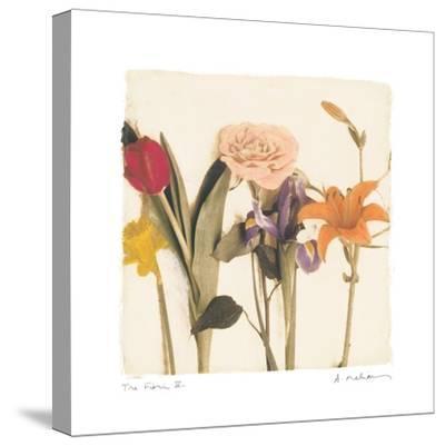 Tre Fiori IV-Amy Melious-Stretched Canvas Print