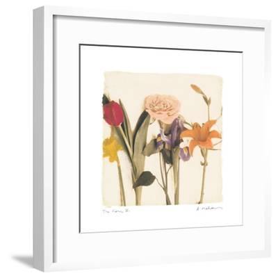 Tre Fiori IV-Amy Melious-Framed Art Print