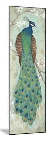 Peacock I-Steve Leal-Mounted Art Print