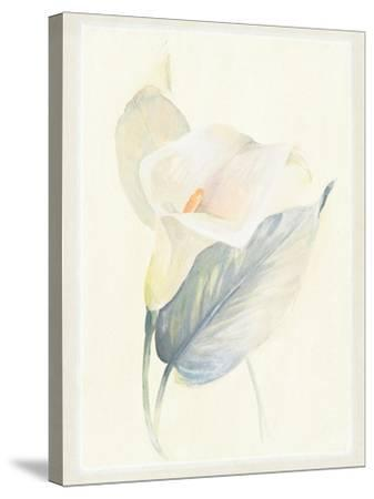 Calla Lily III-Paul Hargittai-Stretched Canvas Print