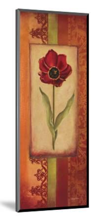 Mediterranean Tulip II-Kimberly Poloson-Mounted Art Print