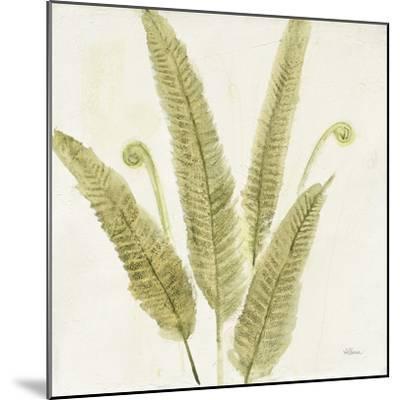 Forest Ferns II-Albena Hristova-Mounted Art Print
