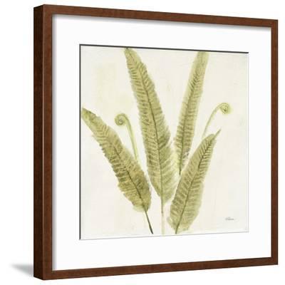 Forest Ferns II-Albena Hristova-Framed Art Print