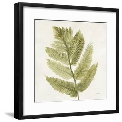 Forest Ferns I-Albena Hristova-Framed Art Print