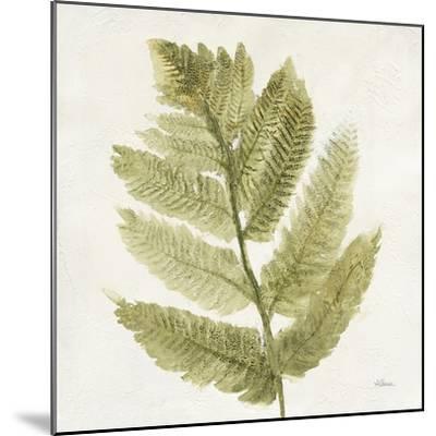 Forest Ferns I-Albena Hristova-Mounted Art Print
