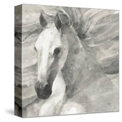 Poseidon Neutral Crop-Albena Hristova-Stretched Canvas Print