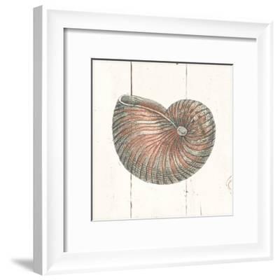 Shell Sketches III Shiplap-Wild Apple Portfolio-Framed Art Print