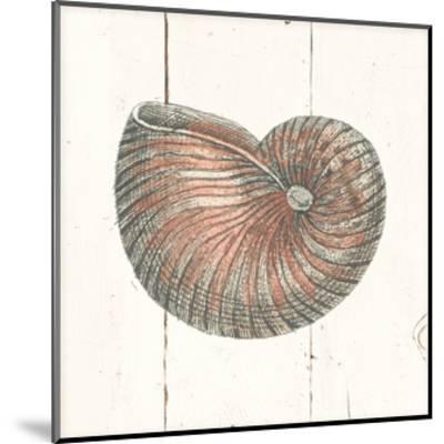 Shell Sketches III Shiplap-Wild Apple Portfolio-Mounted Art Print