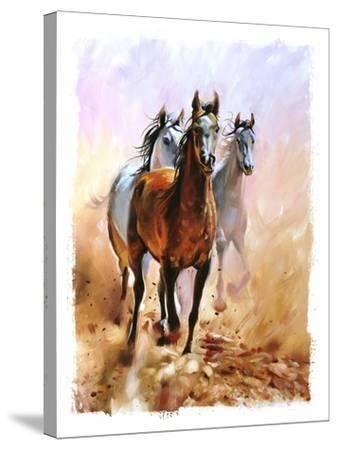 Horse Equestrian Passion Oil Painting Torn Edges-Marc Little-Stretched Canvas Print