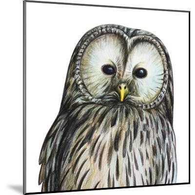 Gray Owl Portrait Drawing- viktoriya_art-Mounted Art Print