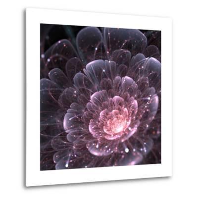 Pink abstract flower with sparkles on black background, fractal illustration-Anikakodydkova-Metal Print