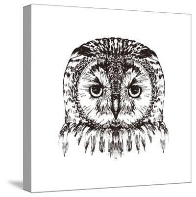 Hand Drawn Owl Portrait, Vector Illustration- Melek8-Stretched Canvas Print