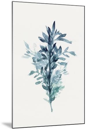 Botanical III-Isabelle Z-Mounted Art Print