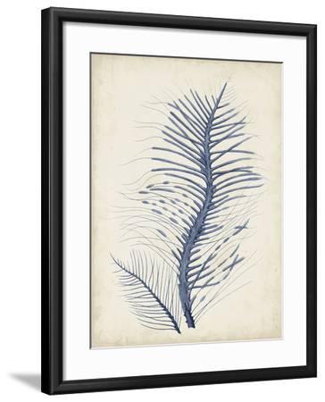 Indigo Coral V-Vision Studio-Framed Art Print
